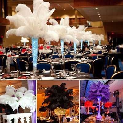10/50/100X Ostrich Feathers Plume Crafts Event Feathers Beautiful Wedding Party