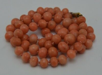 Antique Chinese Tibetan Indian Natural Undyed Pink Salmon Coral Necklace