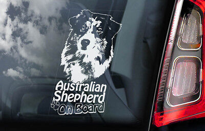Australian Shepherd on Board - Car Window Sticker - Aussie Dog Sign Decal - V03