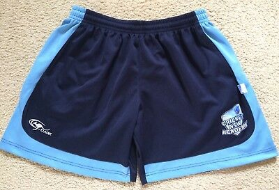 Official Cricket NSW Shorts - Kids Size 14 Youth - Classic - VGC