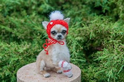 Needle felted miniature of Chihuahua doggie ❤❤❤ :-)  by Yana Fedorova