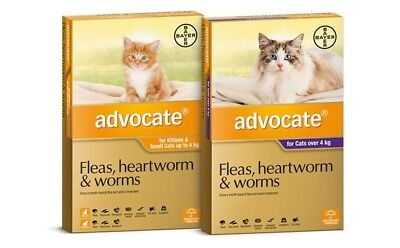 ADVOCATE for 0-4kg Cats - Fleas, Heartworm & Worms (3-Pack)