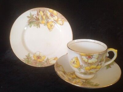 Salisbury Floral Trio Cup, Saucer and Side Plate