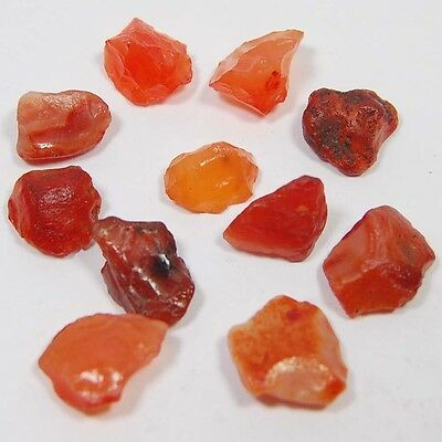 Aaa Quality 75 Cts Raw Mineral Lapidary Carnelian Gemstone Rock Rough Lot 11 Pc