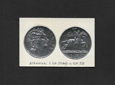 Albania Coin Card by Greiling Germany 1929 -1925 1 Lek Nickel THIS IS NOT A COIN