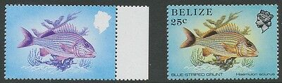 2304 BELIZE 1984 25 C. Fish superb U/M VARIETY: MSSING COLOURS BLACK AND YELLOW