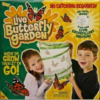Insect Lore - Live Butterfly Garden