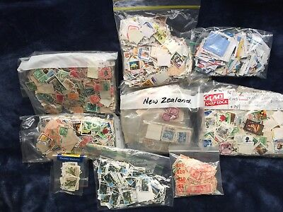 New Zealand Bulk Collection Pre Decimal And Decimal 6,000 Plus Stamps