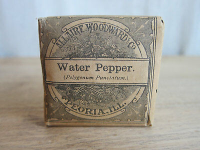 Vintage Advertising Apothecary Drugstore Water Pepper Packet by Allaire Woodward