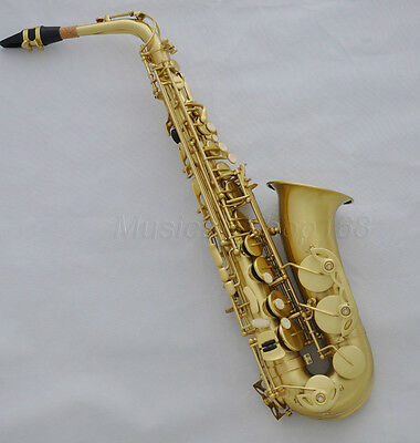 Top new yellow Antique Eb alto saxophone high F# with case