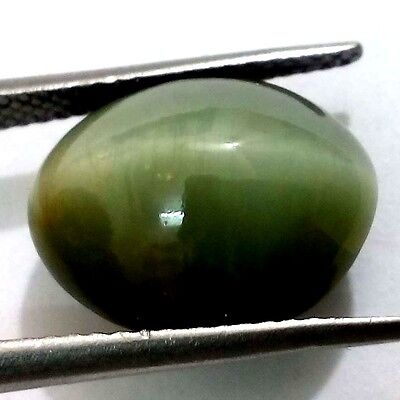 "6.40 Ct 100% Natural Rare Cat""s Eye Quartz Oval Shape Ring Use Cabochon Gemstone"