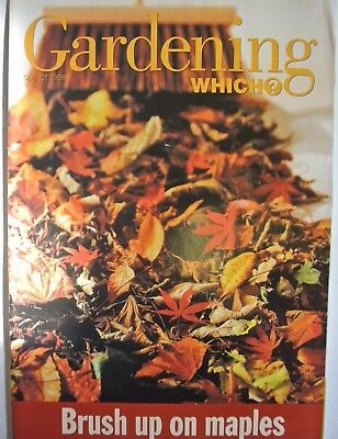 Gardening Which? Magazine. September/October, 1998. Brush up on maples.