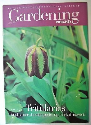 Gardening Which? Magazine. March, 2001. Flowers for cutting. Herbaceous P review