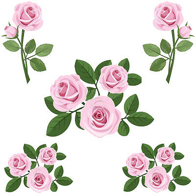 PinK CaBbaGe RoSeS EVerYWheRe ShaBby WaTerSLiDe DeCALs