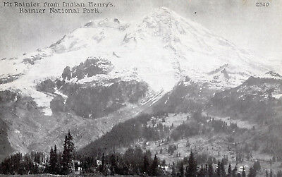 Vintage Postcard Pacific Novelty Co., Mt. Rainier from Indian Henry's