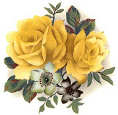 AmaZinG YeLLoW CaBbaGe RoSeS ShaBby WaTerSLiDe DeCALs