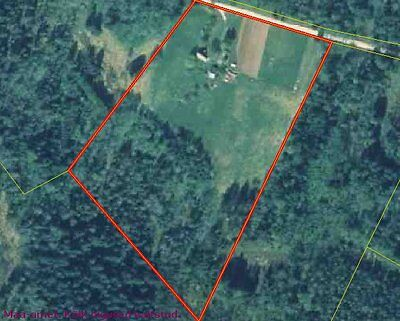 Estonian Country House With Woodland And Pasture - Development Potential