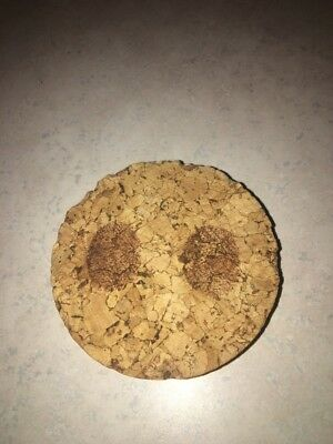 """Replacement Cork for Huge Large Libbey Glass Pig Piggy Bank - 3 3/8"""" Opening"""