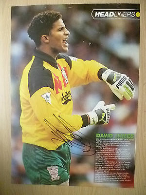 Original Signed Press Cutting- DAVID JAMES at Liverpool FC (apx.A4)