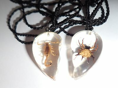 Valentine Pair Necklace Golden Scorpion & Spiny Spider Heart Shape Clear