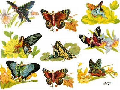 EnChanTeD CoLorFuL FaiRY BuTTerFLieS ShaBbY WaTerSLiDe DeCALs