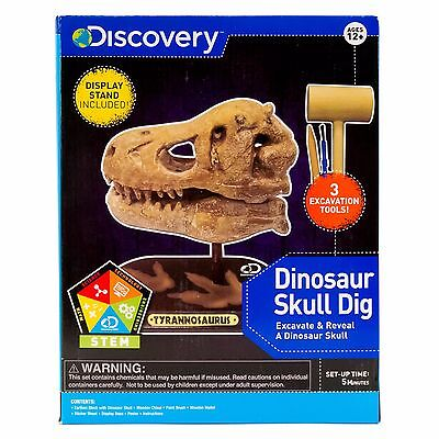 Dinosaur Skull Dig - Discovery - Tyrannosaurus - Tools and Stand included