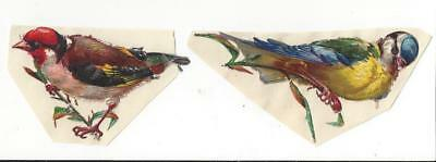 Victorian Die Cut Scraps - Colourful Birds