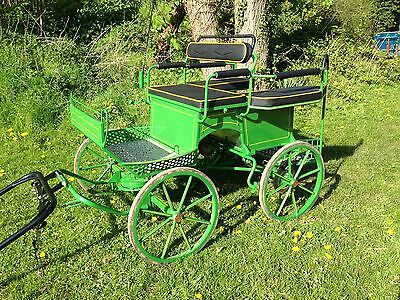 Horse Pony Carriage Wagonette Cart Driving Exercise Competition Dominiak