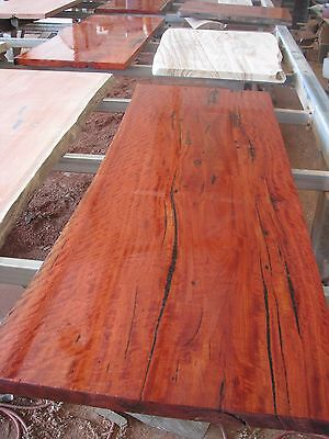 Hardwood Slabs - 100's of timber slabs to choose from