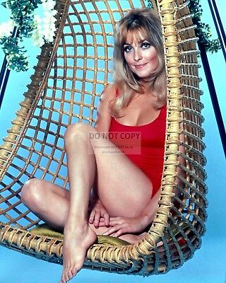 Actress Sharon Tate Pin Up - 8X10 Publicity Photo (Op-220)