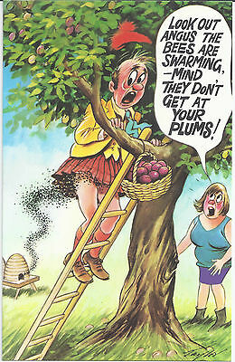 Vintage 1970's Bamforth COMIC Postcard (as new condition) ANGUS Your Plums #233
