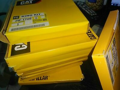 Caterpillar Ring Kit 1W8922