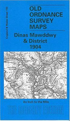 Old Ordnance Survey Map Dinas Mawddwy & District 1904