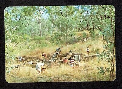 QLD - c1980s POSTCARD - HOLIDAY FOSSICKERS, RUBYVALE, QUEENSLAND