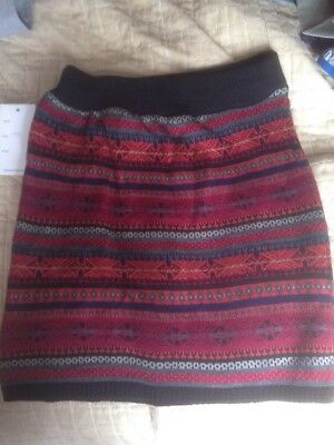 winter skirt 12