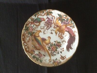 Derby Crown China Plate