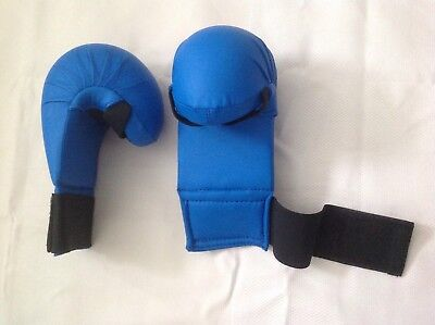 Karate Mitts. Double thick padded for extra protection. Large size.