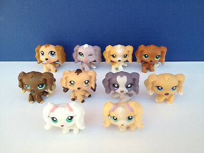 LOT LPS LIttlest Pet Shop cheins  Epagneul  spaniel dog all differents