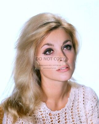 Actress Sharon Tate - 8X10 Publicity Photo (Op-249)