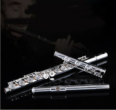 Top Grade Cupronickel 17 Holes Professional Musical instrument C Tone Flute #