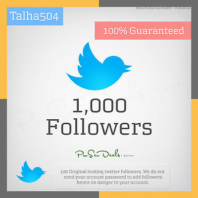 1,000 twitter-Follower Permanent and high Quality