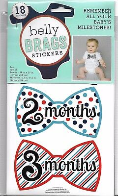 Brag About Monthly Milestone Baby Boy Belly Brags I Am, I Can Stickers NIP