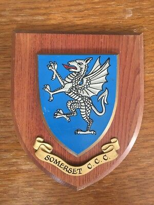 Somerset CCC Hand Painted Wooden Plaque