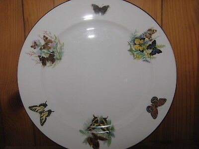 Royal Grafton Old Dinner Plate with Butterflies