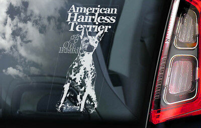 American Hairless Terrier - Car Window Sticker -Dog on Board decal sign AHT -V02
