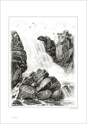 The Watefall       Australian Pencil  Drawing   Limited Edition Print