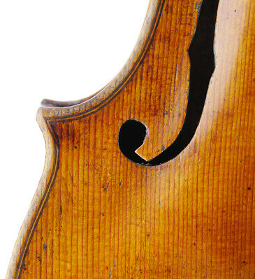 Excellent, antique MATTEO REGAZZI Italian labeled old 4/4 master violin - fiddle