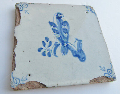 Antique Dutch Delft Tile Circa 1700 Blue White Bird Parrot