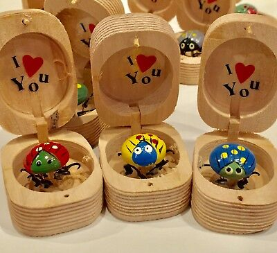 3 I Love You Bugs In Wooden Box Wiggly Lovebug Wood Box Random Colors
