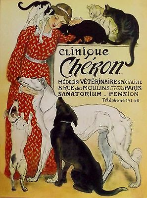 ART DECO FRENCH VETERINARY ADVERT. With cats and dogs. A  4 size PHOTO PRINT.